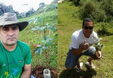 Voluntários plantam árvores em Parque Municipal